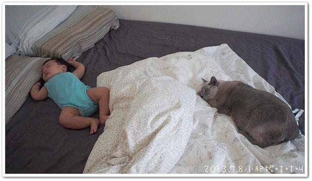 【小貝貝日記】陪睡的睡得好熟啊!!