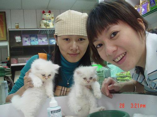 【貓旅】妳在度假,貓也在度假….
